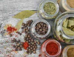 Erfahrungen Foodspring